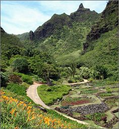 The Limahuli Garden on the North Shore of Kauai features 700-year-old terraces for growing taro, known as loi kalo. The north shore site of the National Tropical Botanical Garden features a variety of plants native to the islands.
