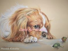 CUSTOM DOG PORTRAIT Dog memorial Original pastel by CanisArtStudio
