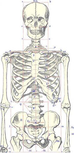 """Social Distortion Squelette 7/"""" Figure"""