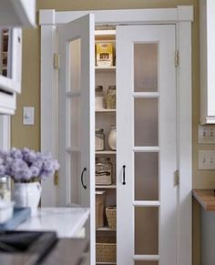 Pantry double-door with frosted glass inserts
