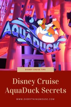 Disney Cruise Aquaduck - Your Essential Guide. All you need to know about the Aquaduck on the Disney Fantasy and Disney Dream, including the best times to ride. #DisneyCruise #DisneyFantasy #DisneyAquaduck #DisneyCruiseTips #DisneyCruisePlanning #DisneyD Cruise Tips, Cruise Travel, Cruise Vacation, Disney Vacations, Family Vacations, Italy Vacation, Vacation Ideas, Family Travel, Disney Honeymoon