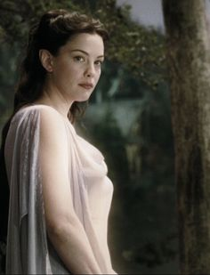 Peter Jackson did not understand the importance of letting us see the back of Arwen's hair.