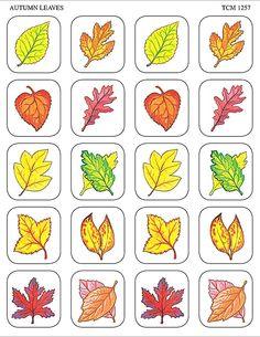 - Autumn Leaves Stickers, 120 Self-Adhesive stickers per pack. Teacher Created Resources stickers are . Thanksgiving Crafts, Fall Crafts, Fall Preschool Activities, Teacher Created Resources, Fall Nail Designs, Leaf Art, Coloring Book Pages, Applique Designs, Kids Cards