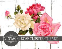 Large Vintage Rose Clipart