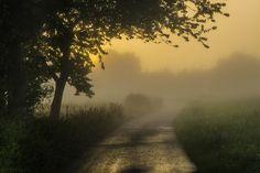 https://flic.kr/p/wZvK4G | Zurück im Sommer / Back in Summer | Nach und vor der Hitze gab es früh am Morgen mal wieder Nebel, nachdem es die Nacht über geregnet hatte.