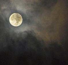 gripping moon