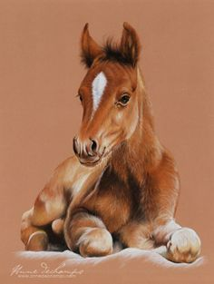 Premiers jours de vie Pastel Art, Paintings, Horses, Animals, On The First Day, Life, Animales, Paint, Animaux