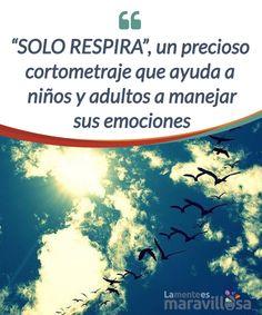 """""""SOLO RESPIRA"""", un precioso cortometraje que ayuda a niños y adultos a manejar sus emociones Este #cortometraje promueve la conciencia #emocional como un vehículo primario para cambiar nuestro modo de #vivenciar nuestras emociones. #Películas #ayudaemocional"""