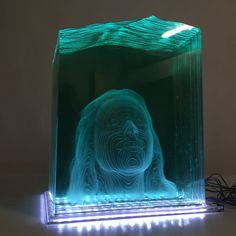Sheets of 6mm float glass were hand cut and laser etched to create this ethereal effect.