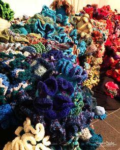 Coral Reefs Around the World :
