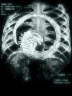 Alien Monster X-Ray Movie Alien vs Predator Black by Slavitees Alien Vs Predator, Predator Movie, Alien Films, Aliens Movie, Art Alien, Giger Alien, Hr Giger, Cultura Pop, Sci Fi Fantasy