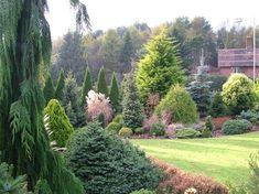 Foxhollow garden view in early November