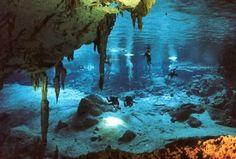 Buceo en el mar de Cortez. Google