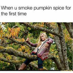 Funny Memes – [When You Smoke Pumpkin Spice…] Basic White Girl, White Girls, 420 Memes, Dankest Memes, Fall Memes, Fresh Memes, Photo Checks, Girl Falling, Funny People