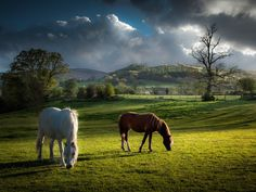 Brecon Beacons offers access to rolling hills, Medieval castles, and  romantic waterfalls. Plus it's arguably the best place to stargaze in the UK.