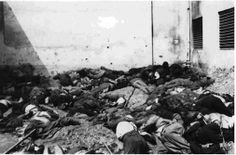 """Germans do not do it - western Ukrainians . Photos often passes for body of """"victims of NKVD"""" learned from their graves . In fact - this is the Lviv pogrom victims , who worked in the prison on the excavations . For the victims of the NKVD had just dug out of the ground body too clean , with no signs of decomposition , one of those killed ( the man in the white shirt in the center ) wearing braces on his neighbor on the right - the lap belt . In prisons, the inmates of these things can not…"""