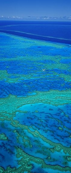 Great Barrier Reef, Australia...