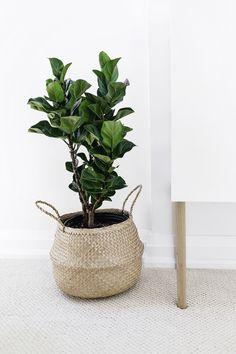Plant in a basket + Ikea Besta hack: Scandinavian sideboard cabinet