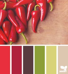 Best feng shui colors if your kitchen is in the South bagua area