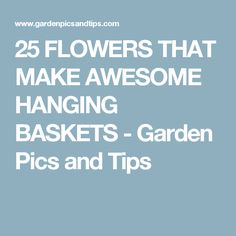 25 FLOWERS THAT MAKE AWESOME HANGING BASKETS - Garden Pics and Tips