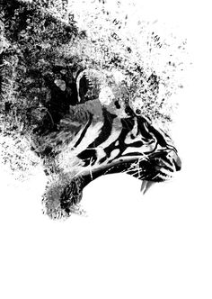 Tiger desing, doble exposure + disintegrate effect By: GVH
