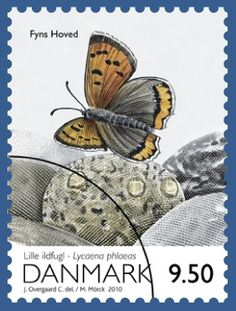 Lycaena phlaeas ( small copper, American copper, or the common copper) Fyns Hover . Danmark stamp 2010