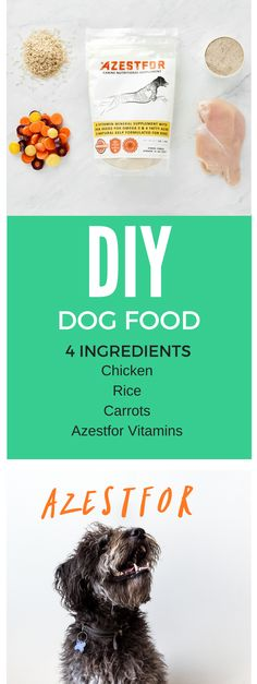 DIY dog food 4 ingredients - Simple and healthy homemade dog food recipe.
