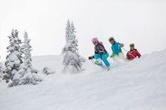 Kids' Clinics are for ages 6-12. Whether your child has been skiing or riding for years and are looking to polish your skills or it's your first time on an inclined snowy surface, Fernie's Kids' Clinics has a program to meet your child's needs. Fernie's extensive selection of programs ensures that riders of all abilities and levels can push themselves to that next level. Ski And Snowboard, Snowboarding, Alpine Skiing, Mountain Resort, Summer Events, Winter Sports, Cross Country, Summer Fun, Surface