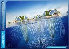 Aequorea, la città sottomarina fatta di alghe