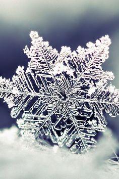 Let it snow I Love Snow, I Love Winter, Snow Scenes, Winter Scenes, Snowflake Wallpaper, Holiday Wallpaper, Foto Macro, Ice Crystals, Winter Magic