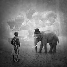 Circus by Leszek Bujnowski, via Surrealism Photomontage, Cool Pictures, Cool Photos, Circus Pictures, Amazing Photos, Dark Circus, Elephants Never Forget, Night Circus, Foto Art