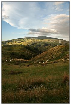 From the Saddle Road, crossing Ruahine Ranges, Manawatu Gorge.  Sheep,  eco windmills generating electricity and interesting clouds...very New Zealand!