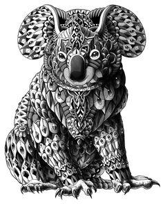 Koala Art Print by BIOWORKZ