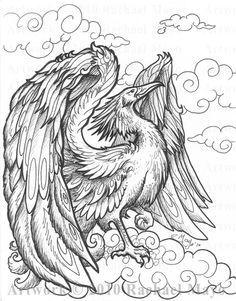 Phoenix coloring page ColoringBoys Pinterest Phoenix Adult