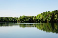 Lake Landscape Photo   Fine Art Photography lake by kimfearheiley, $15.00