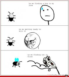 Finding out it flies...