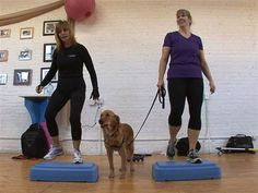 Looking to get healthy this year? Invite your four-legged workout buddy along! K9 Fit Club helps humans lose pounds with their hounds.