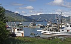 Exploring the City of Prince Rupert - British Columbia - Canada ✈ - News - Bubblews O Canada, Canada Travel, Day Trips From Istanbul, Mustang Island, Haida Gwaii, Fish Farming, Great Vacations, British Columbia, Coast