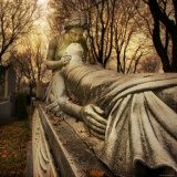 widh i could see in real life Cemetery Statues, Cemetery Art, Cemetery Monuments, Cemetery Angels, Paranormal, Quebec, Old Cemeteries, Graveyards, Love Posters