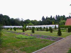 Gołuchów Park - Ogród kwiatowo - ziołowy