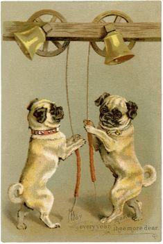 The Graphics Fairy - 10 Vintage Christmas Dog Images Pug Photos, Pug Pictures, Christmas Dog, Vintage Christmas, Christmas Cards, Merry Christmas, Old Pug, Fu Dog, Collars