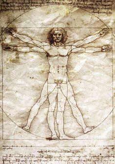 Leonardo Da Vinci - Vetruvian Man