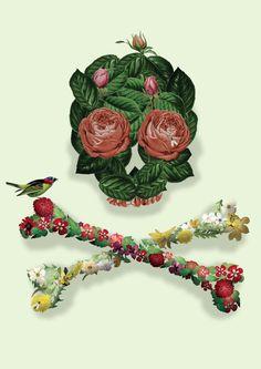 Life Art Print  skull, nature, flower, bird, bones, roses, death, life, rebirth, live, art, illustration, poster, t-shirt, iphone cover,