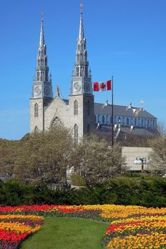 Notre Dame Cathedral, Ottawa, Canada...potential wedding venue