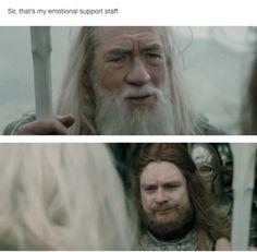 Gandalf Lord of the Rings meme Legolas, Aragorn, Gandalf, Lotr, Concerning Hobbits, O Hobbit, Fandoms, Jrr Tolkien, Fantasy