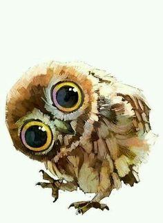 Ron's owl, Pig