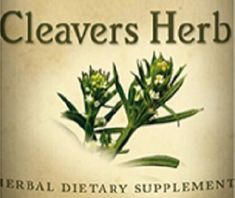 All Natural CLEAVERS HERB Liquid Tincture Herbal Extract for Normal Urinary Tract & Lymphatic Function Support Herb Dietary Supplement USA