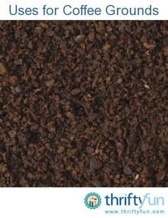 This guide is about using coffee grounds in the garden. Coffee grounds are a great addition to the compost bin and can added directly on the soil for many acid loving plants.