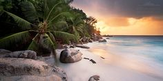 Seychelles (shot from the hard reachable Anse Georgette). Tropical Spirit by Stefan Hefele on 500px