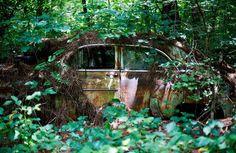 cimetière-auto-4